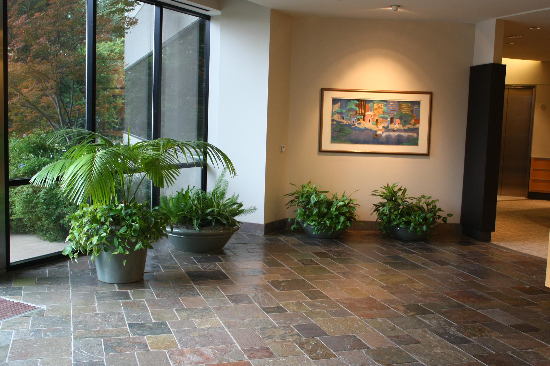 Portfolio creative plant designs