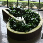 Lobby Planter Bed