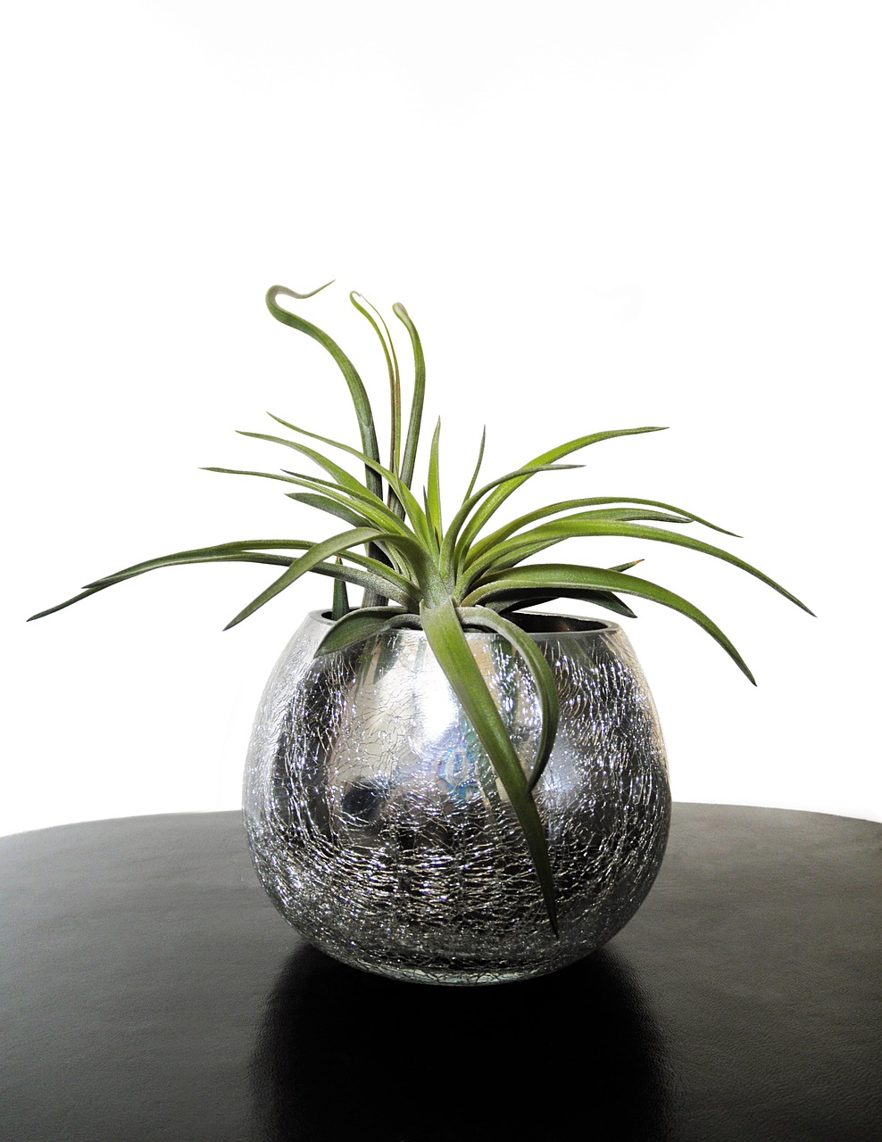 plant design Plant design solutions operates as a software and services distributor.